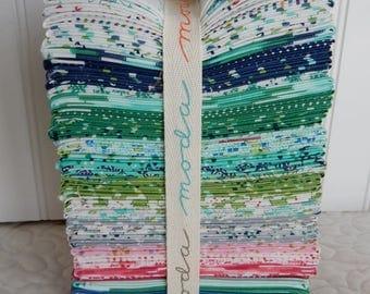 Color Me Happy by V&Co for Moda Fabrics Fat Quarter Bundle
