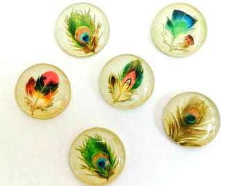 Feather Magnets - Peacock Feather Magnet - Peacock Party Favor - Peacock Wedding - Set of 6 - 1 Inch Domed Glass Circles