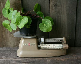 Vintage Rustic Postal Weight Scale 16 lb Capacity Industrial Office 1950s Retro Decor