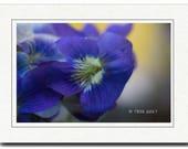 Spring Violets Photography Card - Spring Blossoms Card -Wild Violets Photography Card