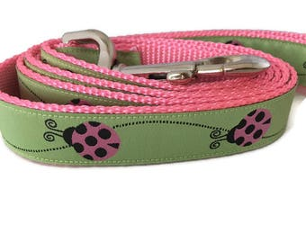 Dog Leash, Ladybug, 1 inch wide, 1 foot, 4 foot, or 6 foot