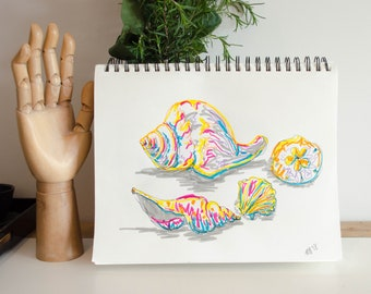 Shells Marker Drawing
