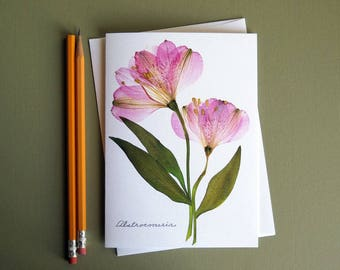 Alstroemeria flowers. soft pink tones, botanical art card, pressed flowers, flat flower designs, greeting card no.1210