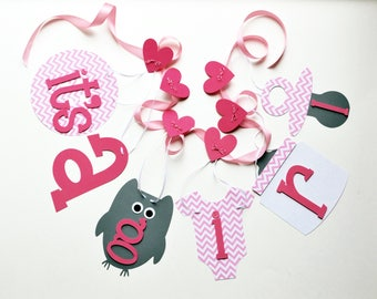 Owl baby shower decorations, pink chevron grey it's a girl banner NEW Larger size by ParkersPrints on Etsy