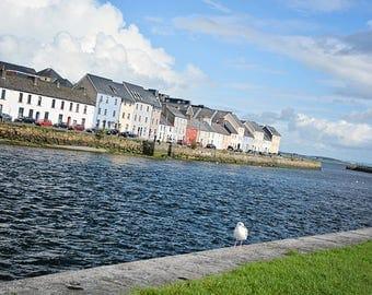 Ireland, Irish, Galway, Bird, Sea, Colorful Houses, Gaelic, Pink, Green, Blue, Yellow, Gaeltacht, Fine Art Photography, Margaret Dukeman