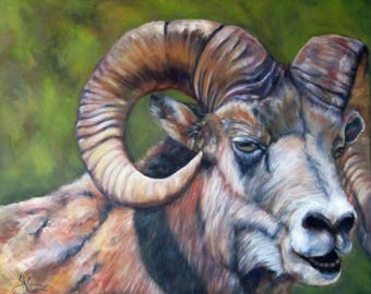 Ram Sheep animal art wild life mountain sheep canvas print Giclee  by Sandra Cutrer Fine Art