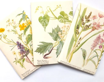 Set of 3 hand-sewn notebooks / journals up-cycled from The Country Diary of an Edwardian Lady