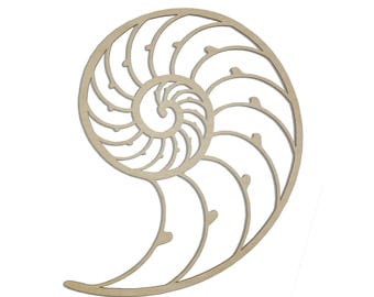 "RESERVED 12"" Nautilus Shell Wall Art"