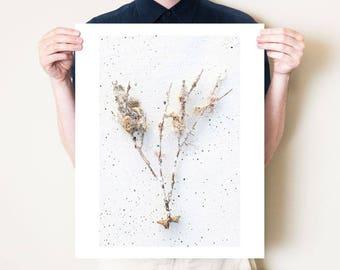 Beach art, coastal artwork. Beach driftwood photography print. Neutral minimalist affordable art. Florida coastal decor, fine art photograph