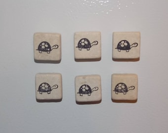 Turtle Magnets - Set of 6