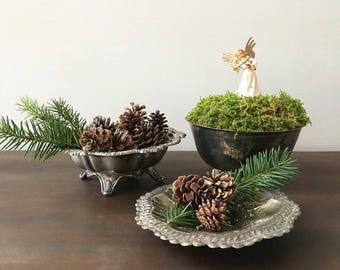 Silver Vessels / Planters / Compote / Succulent Planter / Silver Dish / Dish Garden /  Indoor Garden Vignette / Centerpiece