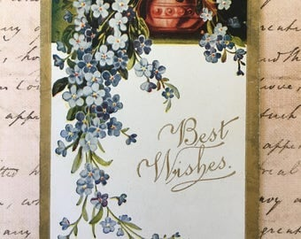 Sweet Edwardian Postcard with Trailing Blue For-Get-Me-Nots