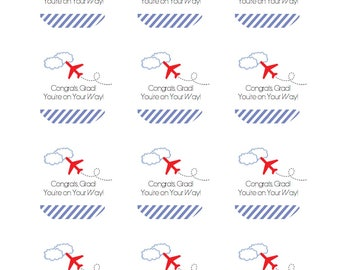 AIRPLANE STICKER / 12 Customizable Sticker Labels / Graduation  / Airplane Party / 1st Birthday Party / Favor Tags / Thank you Tags
