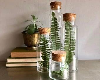 vintage glass jar cork lids apothecary set of 4 graduated canister terrarium