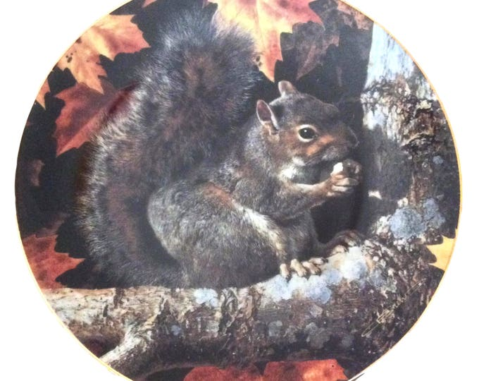 Rustic Wall Art, Gray Squirrel, Woodland Friends, Collector Plate by Carl Brenders, Gift For Christmas