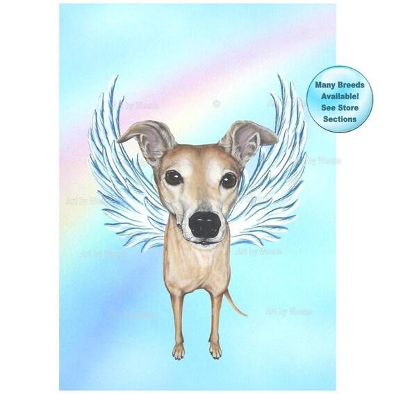 Greyhound Greyhound Angel Greyhound Art Dog Angel