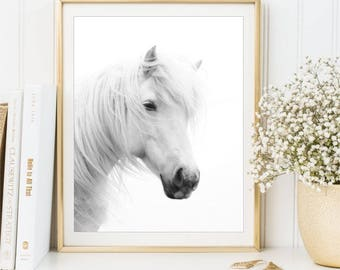 White Horse Photo Print, Black and white photography sign, Modern Minimalist Animal poster, Horse wall art 8x10 and 11x14, DIGITAL FILES