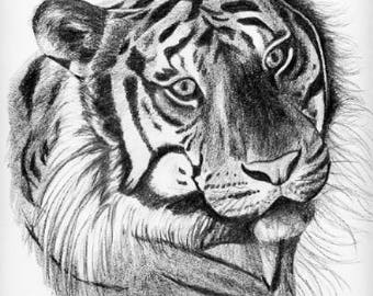 Choice of 2 Tiger, Limited Edition Prints, Signed and Numbered by Canadian Artist Sheri-Lynn Marean