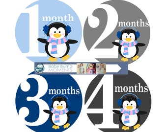 Baby Month Stickers, Baby Boy Monthly stickers,  Monthly Bodysuit Stickers, Gifts for New Mom, Baby Shower Gift, Penguin