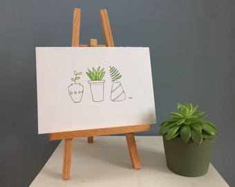 Three Potted Plants - Watercolour