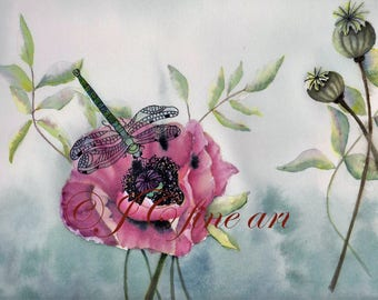 Dragonfly and Pink Poppy