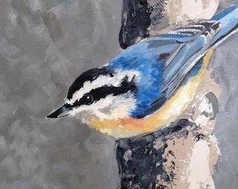 "Nuthatch Bird Original Acrylic 6""x6"" Canvas Painting"