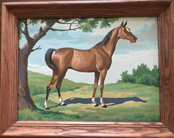 Vintage Horse paint- by Numbers painting  Framed