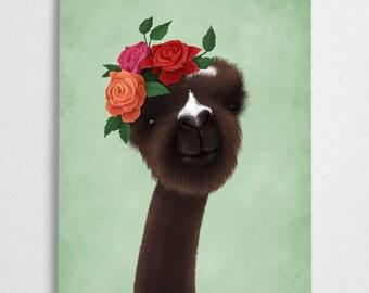 Alpaca art print, llama illustration, roses // Casper