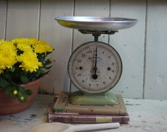 Vintage Pastel Green Kitchen Scales   Waymaster Brand