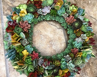 Succulent Wreath 14 inch in bright colors and interesting textures