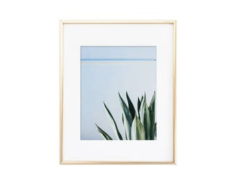 Marfa / Texas / Agave / Photo Print