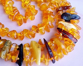 Baltic Amber Necklace Genuine Baltic Amber
