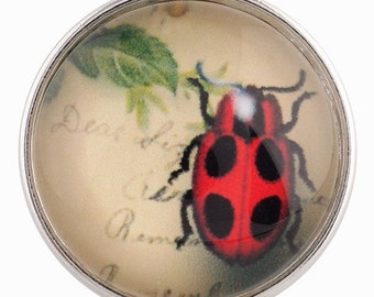 C0137  Art Glass Print Chunk - Red Spotted Beetle
