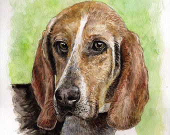 Portrait of your favorite pet