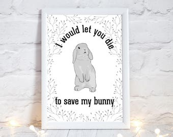 I would let you die to save my rabbit, Crazy rabbit lady, rabbit lover gift, gift for a rabbit lover, save my rabbit