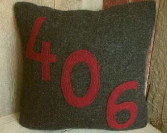 Repurposed Wool Sweater Pillow~406