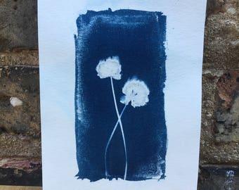 Botanical Cyanotype Print [free US shipping]