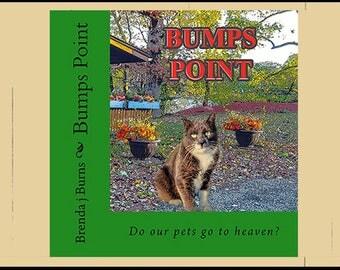 BUMP'S POINT-BOOK