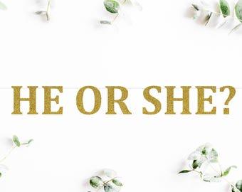 HE OR SHE? (C5) - glitter banner / baby shower banner / gender reveal party / decoration / sign / backdrop