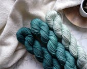 Hand dyed yarn, gradient yarn set, handgefärbte wolle, hand dyed dk yarn, merino silk yarn dk, dk merino yarn, PREORDER - Sea Green