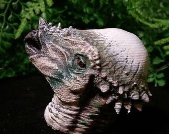 Pachysaurus head bust