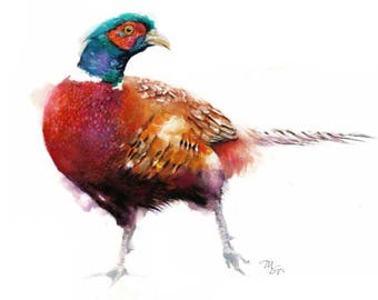 Pheasant Watercolor Print by Mira Guerquin Ring-necked Pheasant