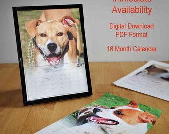 2017-2018 Rescue Dogs Desk Calendar 18 Month School Office Photo Printable Calendars Shelter Dog Walker Animal Lover Pet Sitter Gift 5 x 7