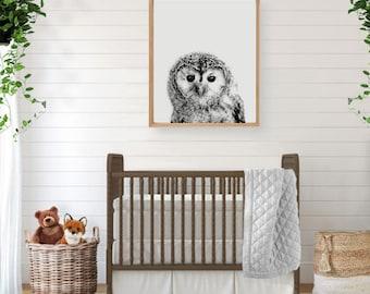Woodland Creatures, Forest Animal, Owl Print, Woodland Baby Shower, Woodland Nursery Art, Large Poster, Woodland Wall Art, Owl
