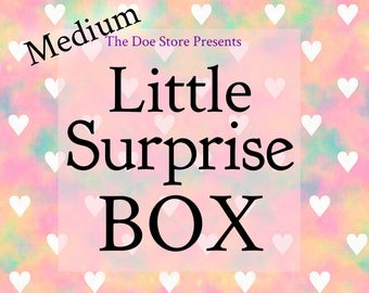 Little Surprise Box Gift (Size Medium)