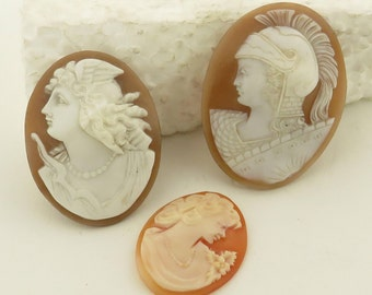 6 Antique Hand Carved Shell, 3 Cameos & 2 Cameo in Silver Frames.