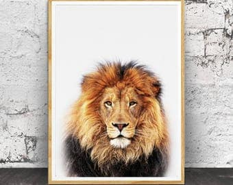 Lion Print, Nursery Prints, Nursery Animal Print, Nursery Animals, Nursery Wall Art, Baby Animal Print, Baby Room Decor, Baby Animals