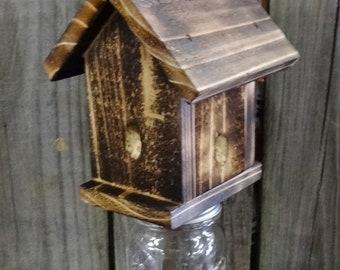 Carpenter Bee Trap - Rustic Style