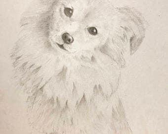 Personalized Custom Pet Portrait Graphite
