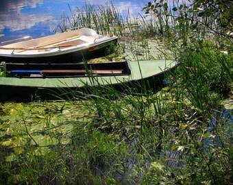 Photography of nature. Polish photography. Wall art. Polish river. Polish art.